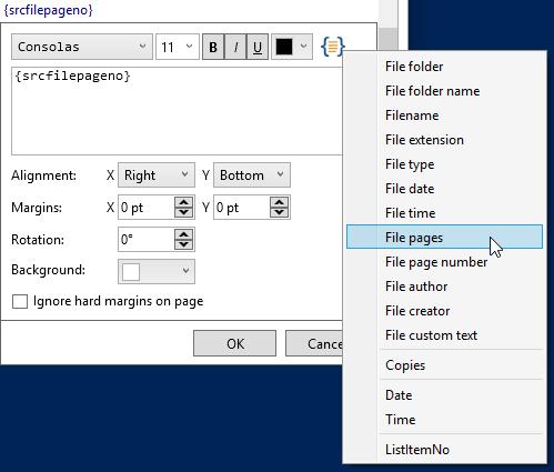 2Printer text watermark settings